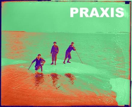 PRAXISbis